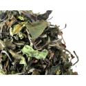 Thé en vrac de Chine- Thé blanc PAI MU TAN - Compagnie Anglaise des Thés